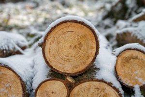 Krožna žaga bo v veliko pomoč pri obdelavi lesa